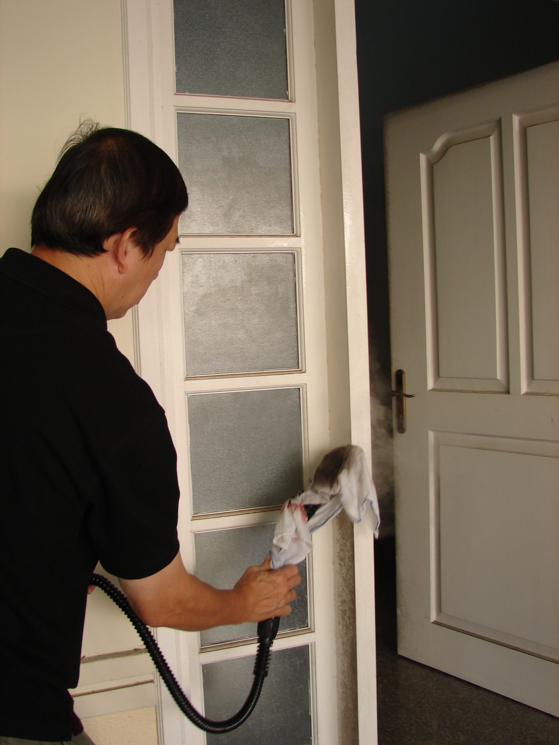 Steam cleaning - Removing Mold